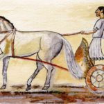 Легенда о Сократе и старом муле