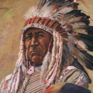 Новый вождь индейцев