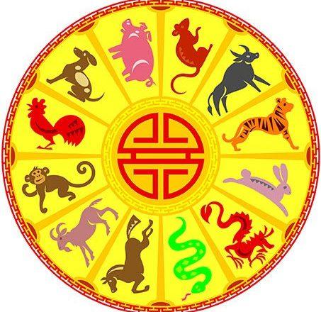 календарь животного цикла