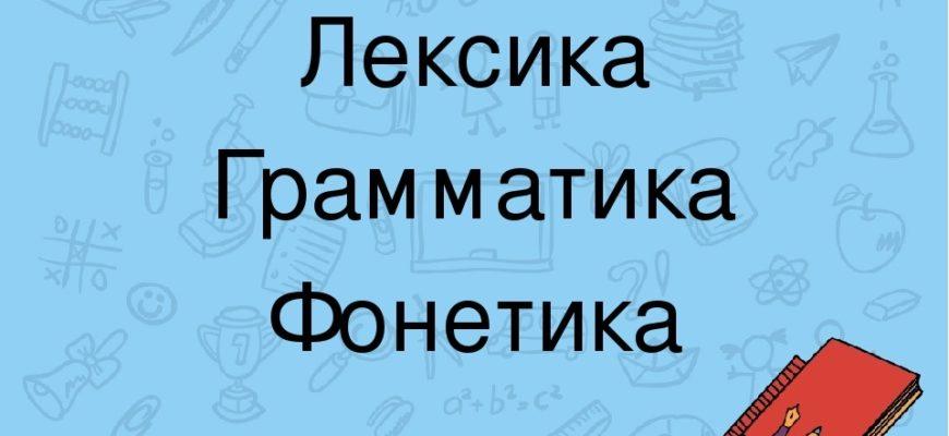 лексика грамматика фонетика