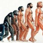 Происхождение человека и языка