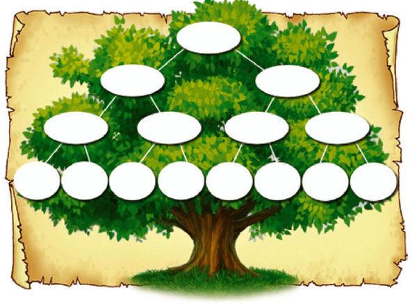родословное древо