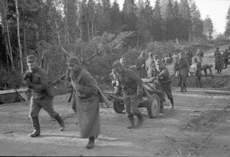 Оборона Петразаводска