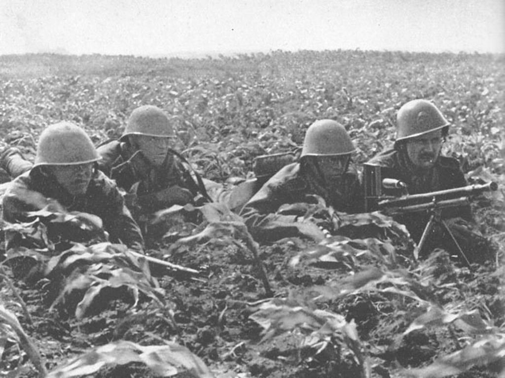 Бои с венграми в июне 1941 года