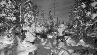 Солдаты в лесу