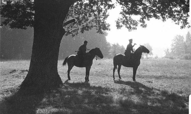 Солдаты на коне