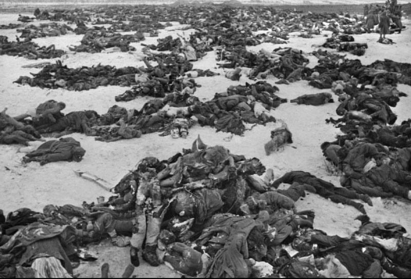 Долина смерти Мясной Бор ВОВ