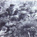 Как партизаны поздравили немцев с 1 мая