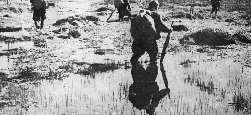 партизаны в болоте