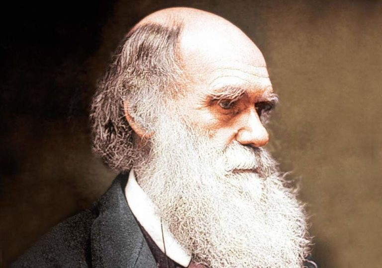 charles darwin biography essays Charles darwin was the originator of the biological theory of evolution learn more at biographycom charles darwin had a mountain named after him, mount darwin, in tierra del fuego for his 25th birthday the monumental gift was given by captain fitzroy.