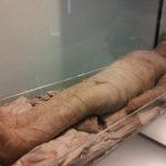 В Египте найдена мумия, которую не смогли идентифицировать