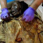 В Куинсе идентифицирована мумия, найденная в 2011 году