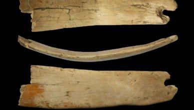 Тиара из мамонтовой кости, возрастом 50000 лет найдена в пещере Денисова