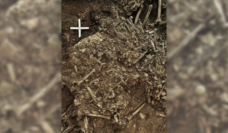 Найден древний, ранее неизвестный штамм чумы
