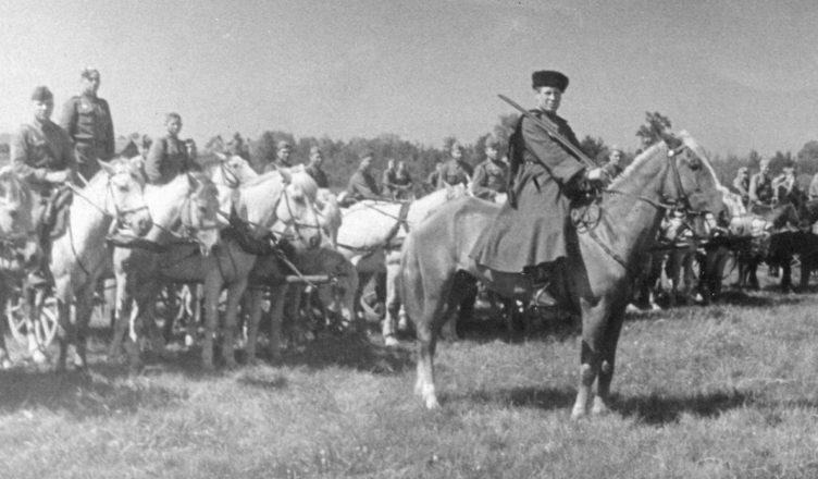 кавалерийская дивизия