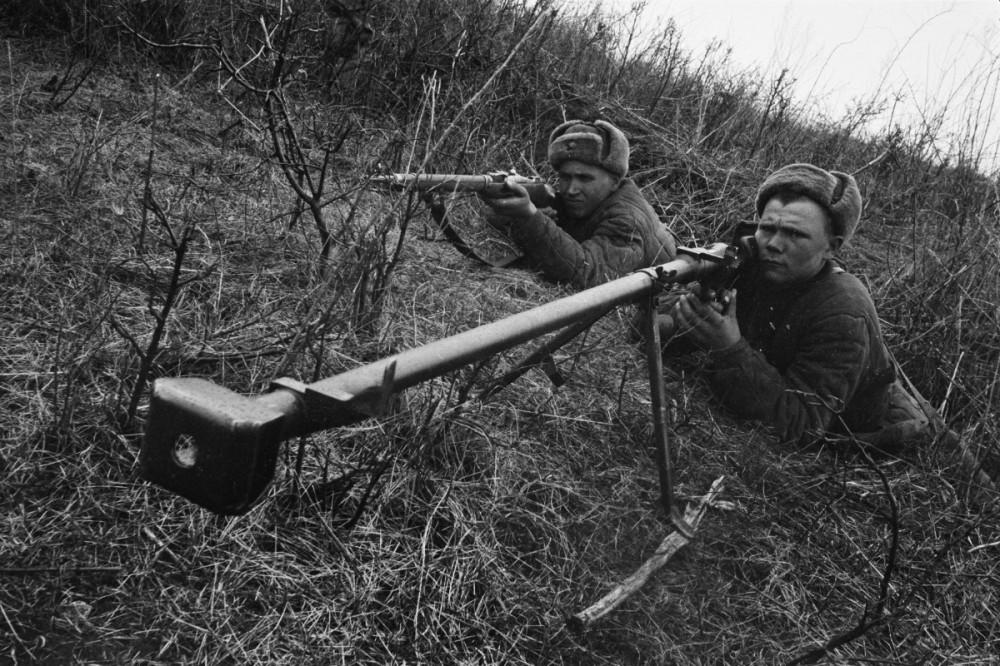 противотанковое ружье вов