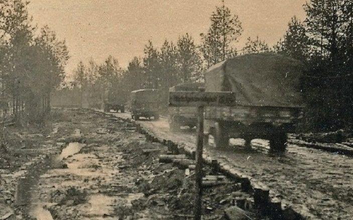 колонна грузовиков