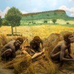 Древне гоминиды могли жить вместе с предками хомо сапиенс