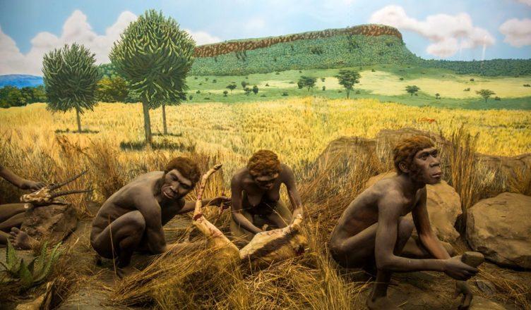 Древние гоминиды