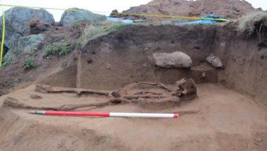 Останки безрукого человека были найдены неподалеку от таинственного захоронения дельфина
