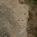 4000-летняя игровая доска рассказала о том, как проводили свое время древние кочевники