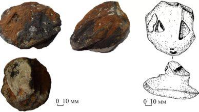 Каменные змеиные головы, возрастом 8300 лет раскрыли обрядовые обычаи жителей каменного века. Эти головы – работа древних ремесленников. По их странной форме можно понять, что мастера таким образом пытались изобразить змеиные головы.