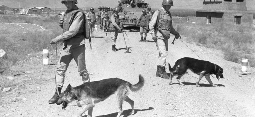 саперы Афганистан