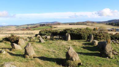 «Древний» сад камней оказался новоделом из 90-х