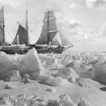 Антарктические экспедиции