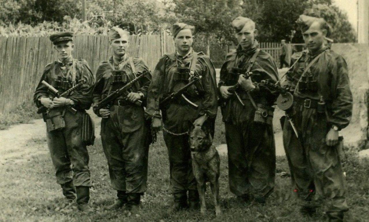 Охотники на бандеровцев