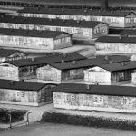 Последнее пристанище 40 тысяч заключенных