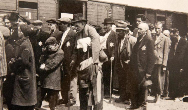 Зачем Немцы евреев освобождали из шталагов