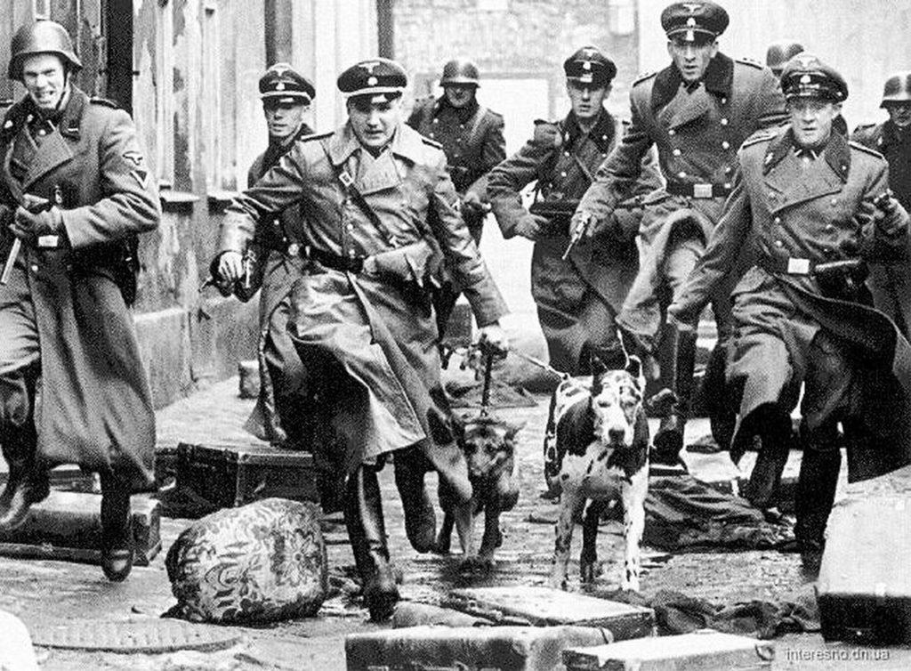 Знал ли Вермахт как действовали эйнзатцкоманды