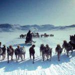 Эскимосы - история народа