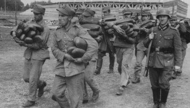 Судьба высших польских офицеров, интернированных в Венгрии
