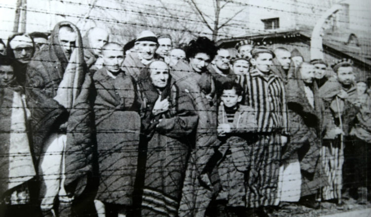 Польские лагеря и количество жертв в них