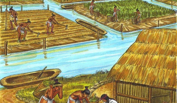 Что выращивали античные земледельцы?