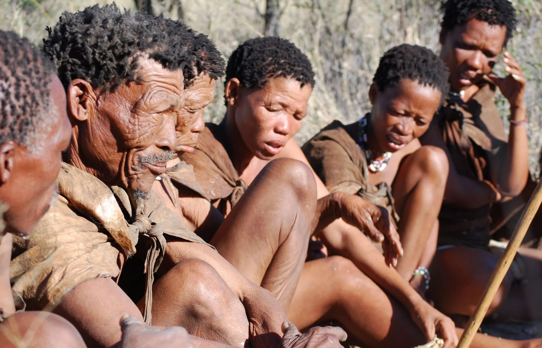 Африканское происхождение европейцев