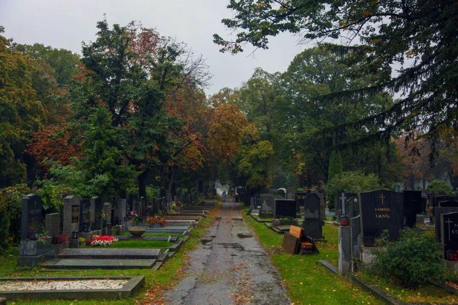 Австрия. Кладбище Zentralfriedhof