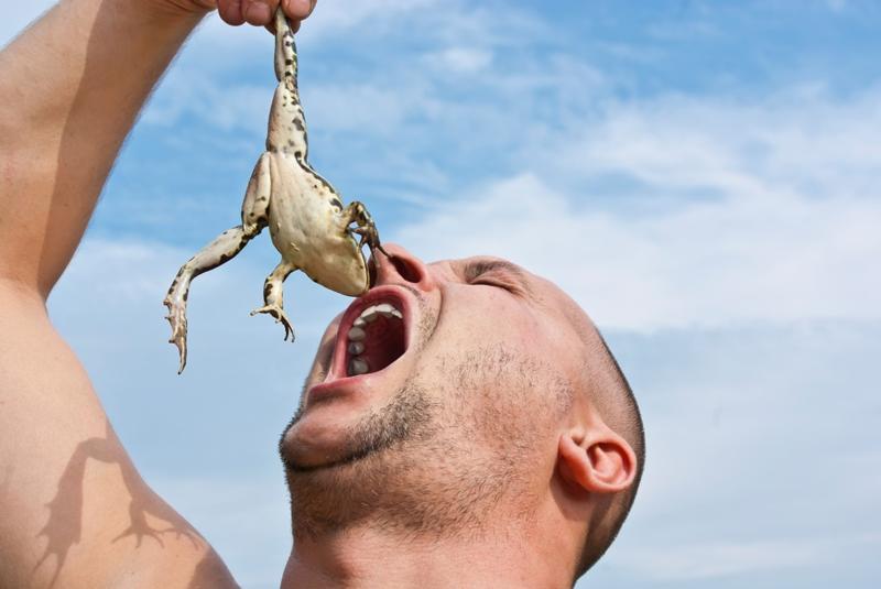 Почему во Франции едят лягушек?