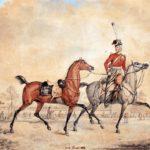 Роль казачьих отрядов в войне с Наполеоном