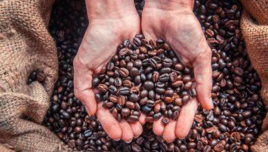 Как кофе изменил мир