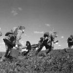 """Как наши готовились к немецкой операции """"Цитадель"""""""