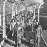 Селекция заключенных в концлагере