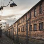 """""""Особая обработка"""" в Освенциме"""