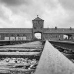 Контрабанда в Освенциме