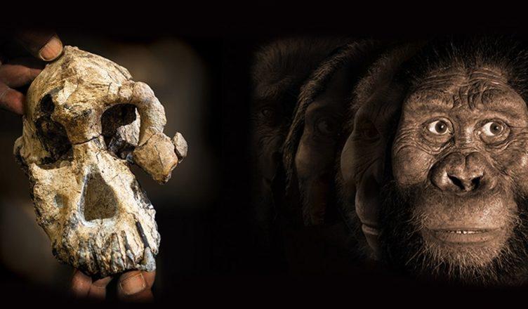 древние вещи, которые удалось воссоздать учёным