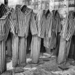 Воспоминая заключенного врача Освенцима