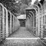 Как работали в Освенциме