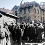 Цыгане в концлагере